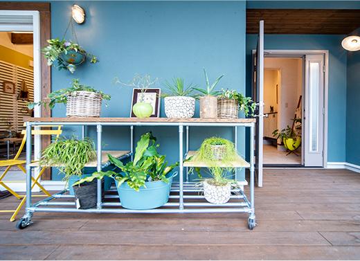 植物を取り込みライフウィズグリーン。